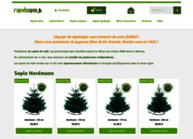 rapidsapin.com