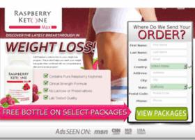 raspberryketone.net