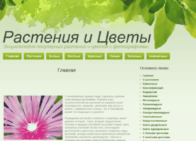 rasteniy.net