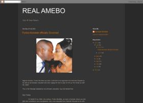 realamebo.blogspot.co.nz