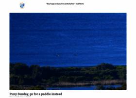 realsurf.com