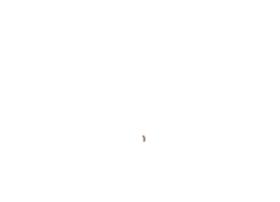 rebootstories.com