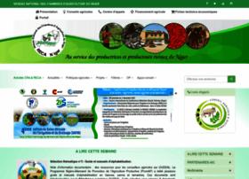 reca-niger.org