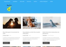 recifalbox.com