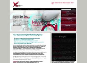 redflymarketing.com