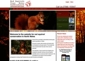 redsquirrels.info