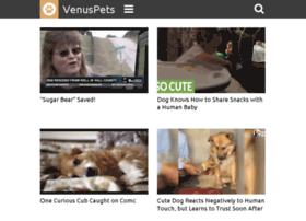 rescue.venuspets.com
