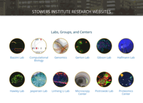 research.stowers-institute.org