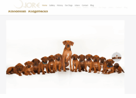 rhodesian-ridgeback-puppies.co.uk