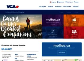 richmondhillanimalhospital.net