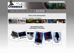 rlortie.oiseaux.net