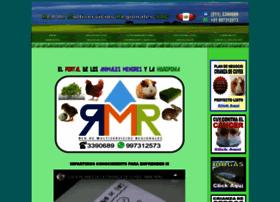 rmr-peru.com