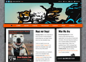rocketdogrescue.org