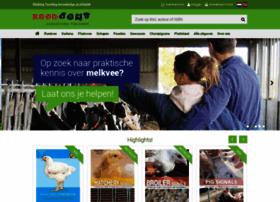 roodbont.nl