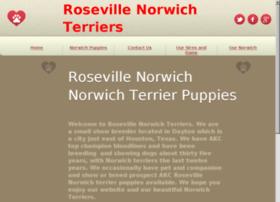 rosevillenorwich.com