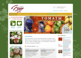 rus-bazar.com
