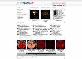 russian-records.com