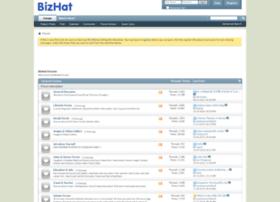 s3.bizhat.com