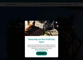 saddleuptours.com