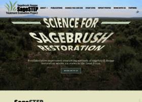 sagestep.org