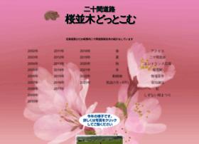 sakuranamiki.com