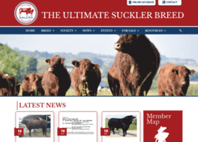 salers-cattle-society.co.uk
