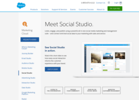 salesforce.buddymedia.com