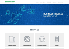 salzertechnologies.com