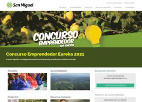 sanmiguelglobal.com