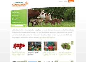 sannmann.com