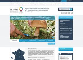 sante-environnement-travail.fr