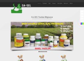 saselsoft.com