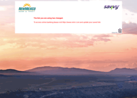 savvyatnmb-t.com