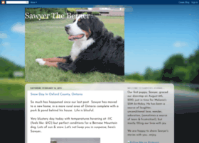 sawyertheberner.blogspot.com