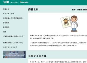 scabies.jp