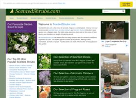 scentedshrubs.com