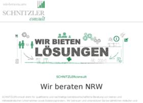 schnitzler-consult.com