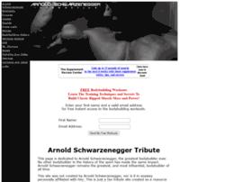 schwarzenegger-interactive.com