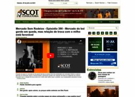 scotconsultoria.com.br
