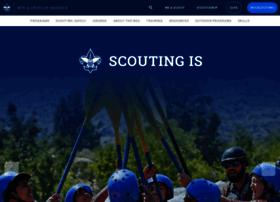 scoutingcoins.com
