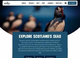 seabird.org