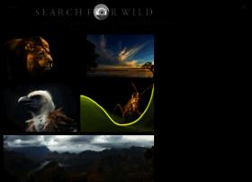 searchforwild.com