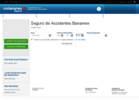 segurosbanamex.com