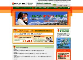 selesys.net