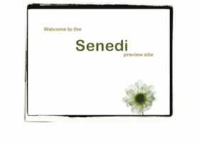 senedi-wip.com