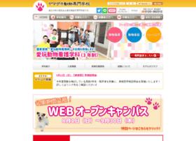 senmon.yamazaki.ac.jp