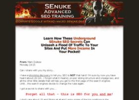 senukeseotraining.com