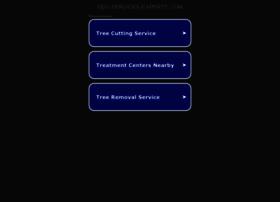 seo-services-experts.com
