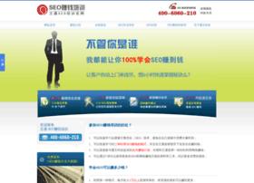seo.net.cn