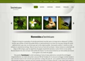 seorimicuaro89.webnode.es
